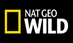 Nat Geo Wild_1